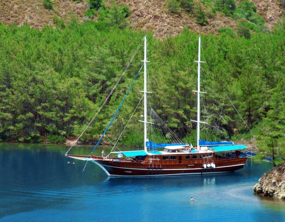 tekne ve hayat